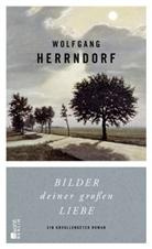 Wolfgang Herrndorf - Bilder deiner großen Liebe