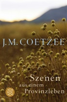 J. M. Coetzee - Szenen aus einem Provinzleben