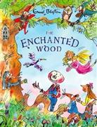 Blyton, E. Blyton, Enid Blyton - The Enchanted Wood (Deluxe Ed)