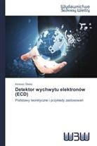 Ireneusz liwka, Ireneusz Sliwka - Detektor wychwytu elektronów (ECD)