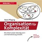 Niels Pfläging - Organisation für Komplexität