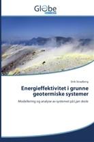Eirik Straalberg - Energieffektivitet i grunne geotermiske systemer