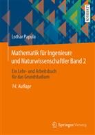 Lothar Papula - Mathematik für Ingenieure und Naturwissenschaftler - 2: Ein Lehr- und Arbeitsbuch für das Grundstudium
