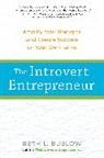 Beth Buelow - The Introvert Entrepreneur