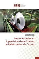 Hatem Ben Abdel Jlil, Hanèn Ben Cheikh, Hanène Ben Cheikh - Automatisation et supervision d