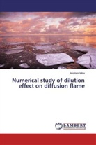 Arindam Mitra - Numerical study of dilution effect on diffusion flame