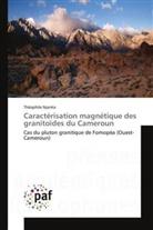 Théophile Njanko, Njanko-t - Caracterisation magnetique des