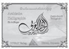 Mohamed Abdel Aziz - Arabische Kalligraphie für Anfänger: Naskh-Schrift. Übungsheft.1