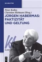 Hiebaum, Christian Hiebaum, Pete Koller, Peter Koller - Jürgen Habermas: Faktizität und Geltung