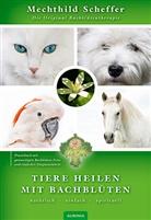 Mechthild Scheffer - Tiere heilen mit Bachblüten - Praxisbuch