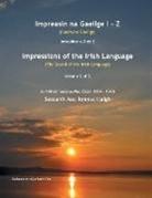 Seosamh Mac Ionnrachtaigh - Impreasin na Gaeilge I - Z