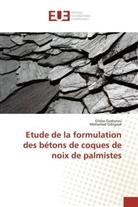 Mohamed Gibigaye, Gilda Godonou, Gildas Godonou - Etude de la formulation des