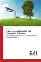 Fulvio Zoppi - I Meccanismi Flessibili del Protocollo di Kyoto