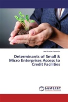 Meti Busha Gemechu - Determinants of Small & Micro Enterprises Access to Credit Facilities