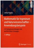 Lothar Papula - Mathematik für Ingenieure und Naturwissenschaftler: Anwendungsbeispiele