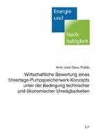 Amir José Daou Pulido - Wirtschaftliche Bewertung eines Untertage-Pumpspeicherwerk-Konzepts unter der Bedingung technischer und ökonomischer Unwägbarkeiten