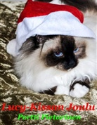 Pertti Pietarinen - Lucy-Kissan Joulu