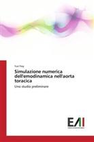 Yuri Frey - Simulazione numerica dell'emodinamica nell'aorta toracica