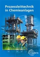 Marin Böckelmann, Marina Böckelmann, Marin Thieme, Marina Thieme, Henr Winter, Henry Winter - Prozessleittechnik in Chemieanlagen