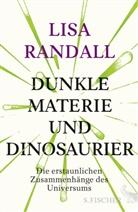 Lisa Randall - Dunkle Materie und Dinosaurier