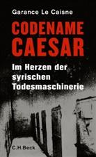 Garance Le Caisne - Codename Caesar