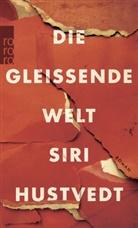 Siri Hustvedt - Die gleißende Welt