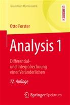 Otto Forster - Analysis 1