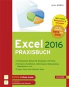Ignatz Schels - Excel 2016 Praxisbuch