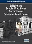 Matthew W. Gosney, Claretha Hughes - Bridging the Scholar-Practitioner Gap in Human Resources Development