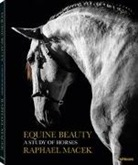 Raphael Macek - Equine Beauty