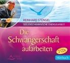 Reinhard Stengel - Die Schwangerschaft aufarbeiten, 2 Audio-CDs (Hörbuch)