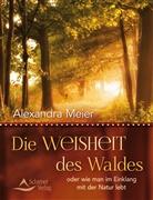 Alexandra Meier - Die Weisheit des Waldes