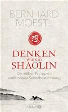 Bernhard Moestl - Denken wie ein Shaolin