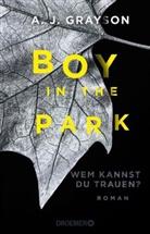 A J Grayson, A. J. Grayson - Boy in the Park - Wem kannst du trauen?
