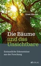 E. Zürcher, Ernst Zürcher - Die Bäume und das Unsichtbare