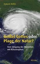 Francois Walter, François Walter - Geißel Gottes oder Plage der Natur?