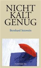Bernhard Setzwein - Nicht kalt genug