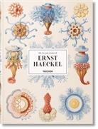 Ernst Haeckel, Julia Voss, Raine Willmann, Rainer Willmann - The art and science of Ernst Haeckel