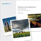 Damir Rajle - Skizzen aus Slawonien