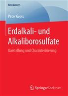 Peter Gross - Erdalkali- und Alkaliborosulfate