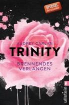 Carlan, Audrey Carlan - Trinity - Brennendes Verlangen