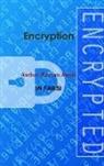 Keyvan Amini - Encryption