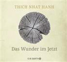 Thich Nhat Hanh, Thich Nhat Hanh - Das Wunder im Jetzt