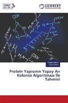 Turga Batbat, Turgay Batbat, Celal Öztürk - Protein Yapisinin Yapay Ari Kolonisi Algoritmas Ile Tahmini