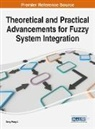 Deng-Feng Li - Theoretical and Practical Advancements for Fuzzy System Integration