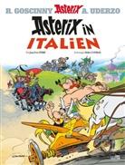 Didier Conrad, Jean-Yves Ferri, Didier Conrad, Jean-Yves Ferri - Asterix in Italien