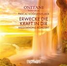 ONITANI, ONITANI Seelen-Musik, Pascal Voggenhuber, Pasca Voggenhuber, Pascal Voggenhuber - Erwecke die Kraft in Dir, 1 Audio-CD (Hörbuch)