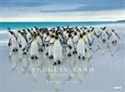 Yukihiro Fukuda - Penguin Land