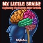 Baby, Baby Professor - My Little Brain! - Explaining The Human Brain for Kids