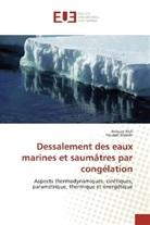Youssef Mandri, Anoua Rich, Anouar Rich - Dessalement des eaux marines et saumâtres par congélation